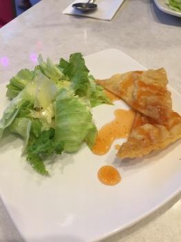 Salad and Deep Fried Gyoza stuff