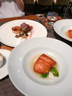 Steelhead Salmon + Braised Shortrib 'Stroganoff'